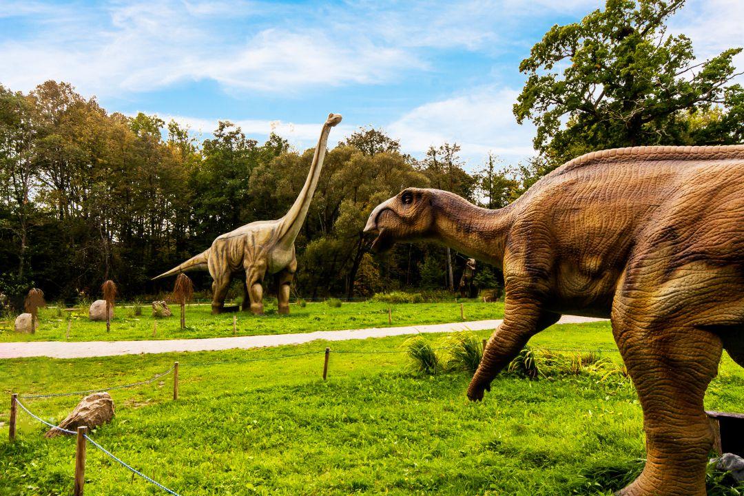 Dinozaurų parkas, DINOPARK